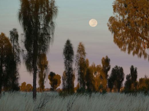 Uluru-Kata Tjuta Nat'l Park_AUS_amy_toensing