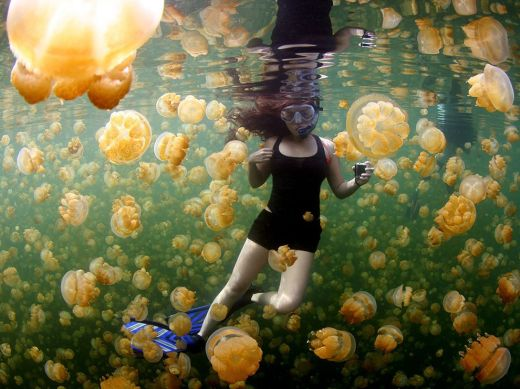 underwater-girl-jellyfish_89910_990x742